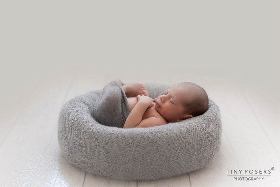 Posing Ring for Newborn Boy- 'Create-a-Nest'™ Ralph photoshoot props for sale