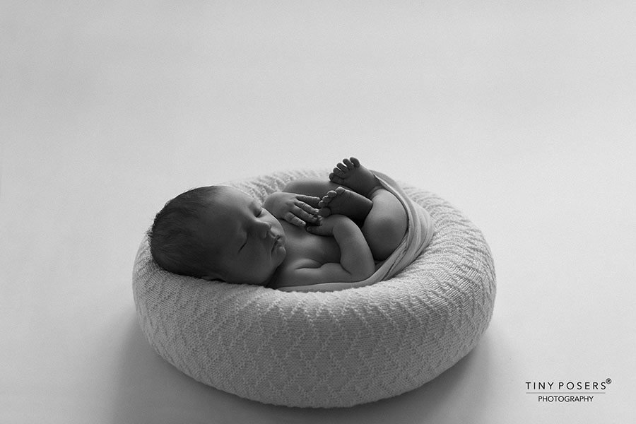 Baby Poser for Photography - 'Create-a-Nest'™ Fletcher white photoshoot props for sale europe