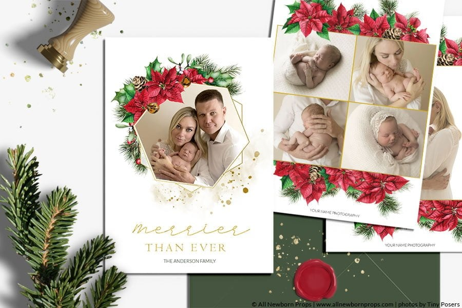 Christmas Card Photoshop Template Poinsettia Wreath All Newborn Props